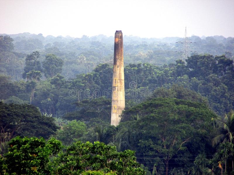 Les briques fabriquent la cheminée dans la forêt verte images stock
