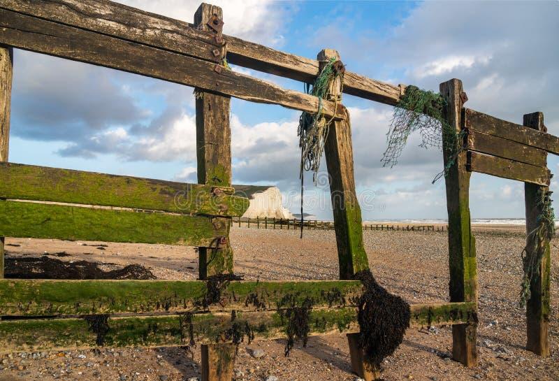 Les brise-lames en bois encadrent les falaises blanches de sept soeurs image libre de droits