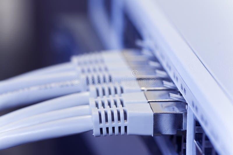 Les câbles LAN Se sont connectés à un commutateur photo libre de droits