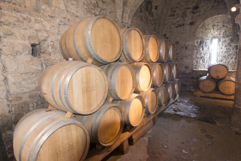 Les cachots du château de Chillon, Suisse photos libres de droits
