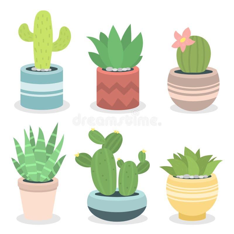 Les cactus à la maison cactiformes de nature de plante verte de cactus dirigent l'illustration de l'arbre avec la fleur illustration de vecteur