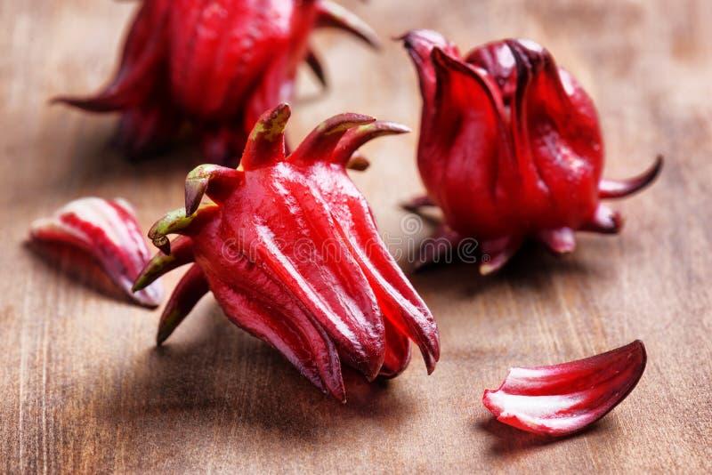 les calices de Magenta-couleur (sépales) du roselle fleurit sur la table image stock