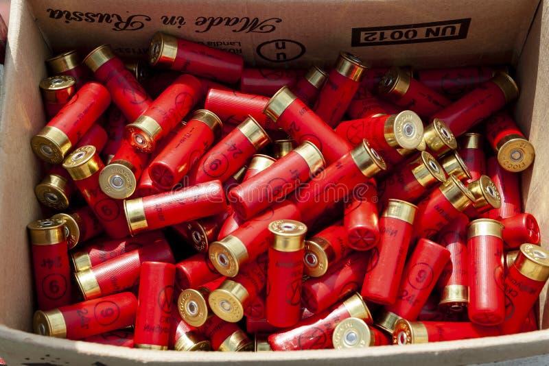 Les cartouches de chasse sont rouges dans la boîte images stock