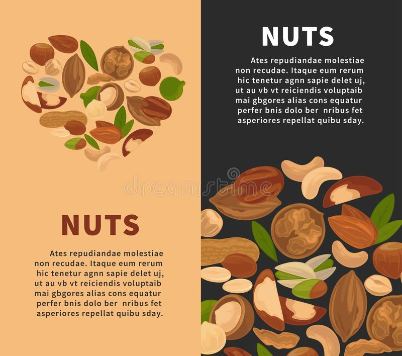 Les casse-croûte Nuts de nourriture d'écrou de nutrition de noyaux dirigent les affiches plates illustration libre de droits