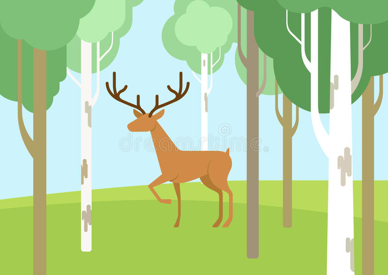 Les cerfs communs dans la bande dessinée plate de forêt de bichwood dirigent l'animal sauvage