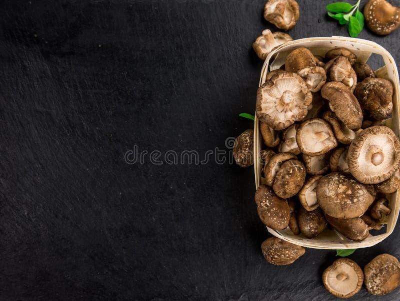 Les champignons de shiitaké sur un vintage slate la dalle, foyer sélectif images libres de droits