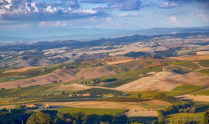 Les champs de Toscane et les oliveraies au lever du soleil photographie stock libre de droits