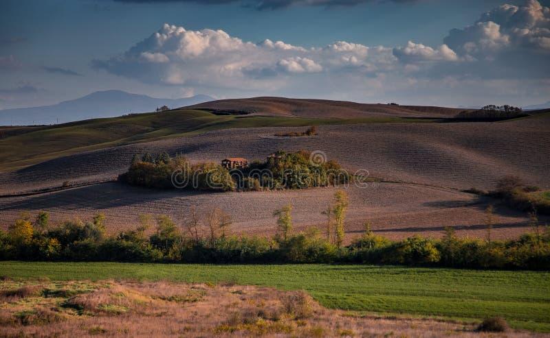 Les champs de Toscane et les oliveraies au lever du soleil images stock