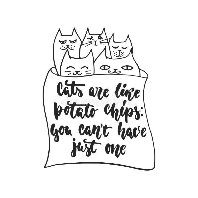 Les chats sont comme des pommes chips, vous peuvent le ` t avoir juste un - lettrage tiré par la main de danse illustration de vecteur