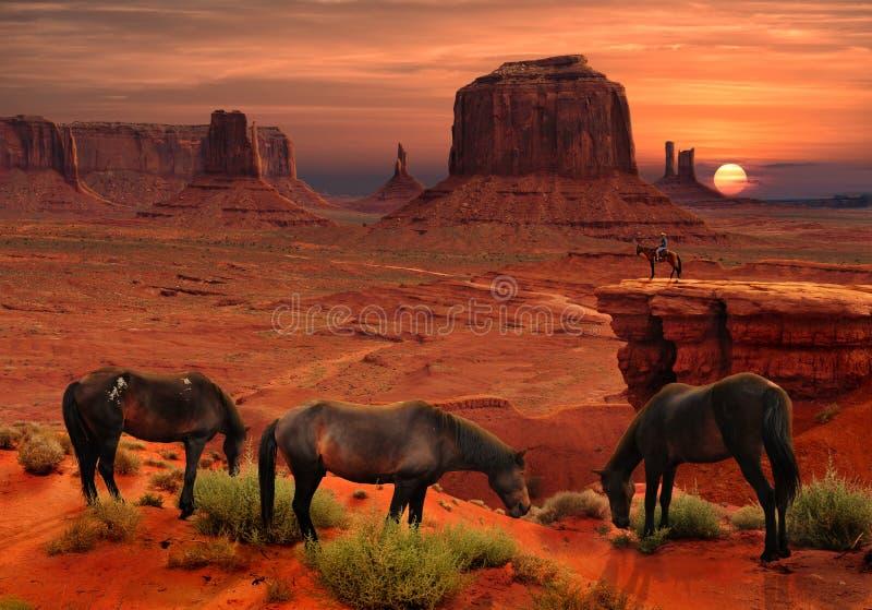 Les chevaux au point du ` s de John Ford donnent sur en parc tribal de vallée de monument, Arizona Etats-Unis photo stock