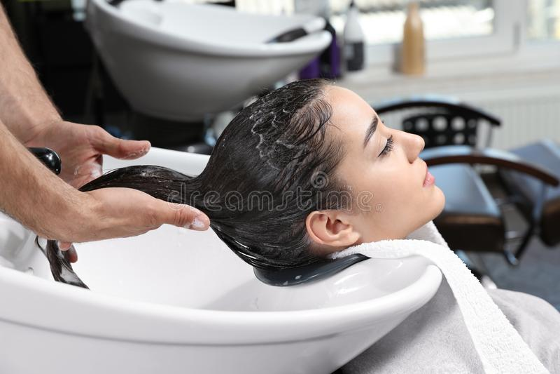 Les cheveux du client de lavage de styliste à l'évier dans le salon image libre de droits