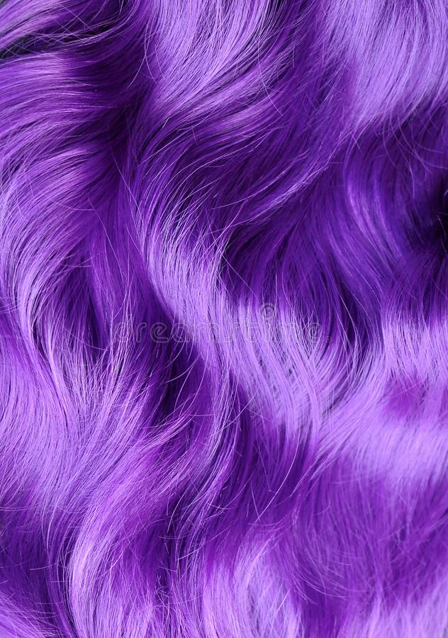 Les cheveux onduleux violets vifs, se ferment, la publicité de salon de coiffure, les cheveux d images libres de droits