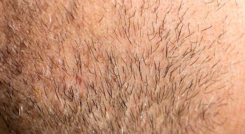 Les cheveux sur la barbe masculine Macro image stock