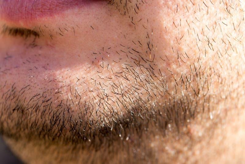 Les cheveux sur la barbe masculine Macro photos libres de droits