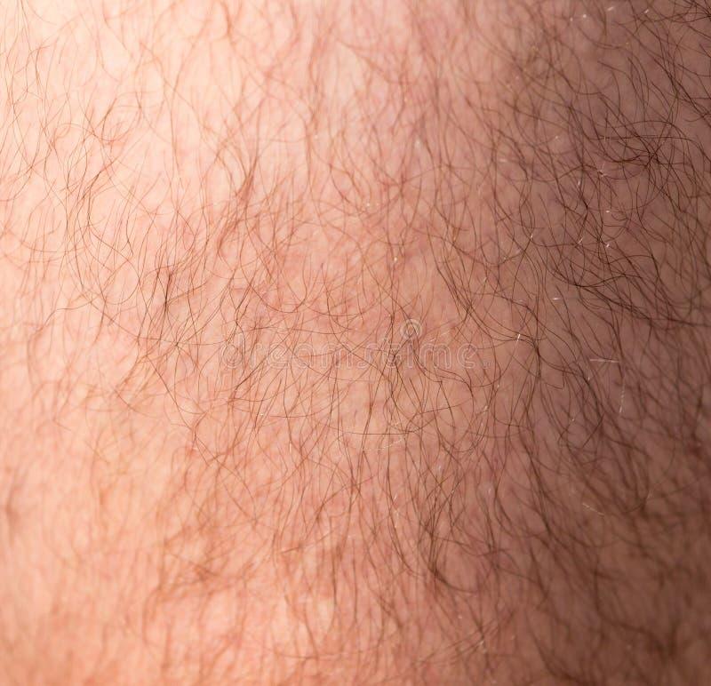 Les cheveux sur la peau humaine comme fond images libres de droits