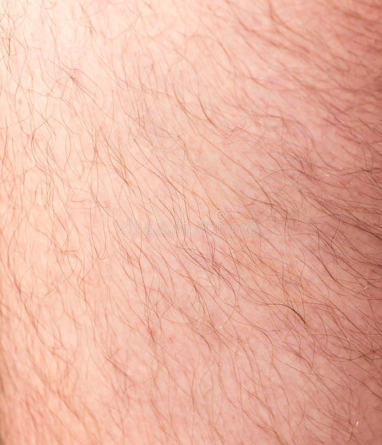 Les cheveux sur la peau humaine comme fond image libre de droits