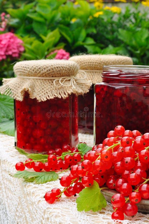 Les chocs de la groseille rouge faite maison bloquent avec les fruits frais photographie stock libre de droits