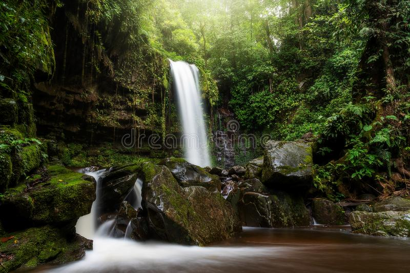 Les chutes de Mahua dans le parc national Crocker Range Tambunan photos libres de droits