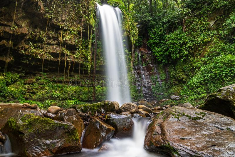 Les chutes de Mahua dans le parc national Crocker Range Tambunan photo stock