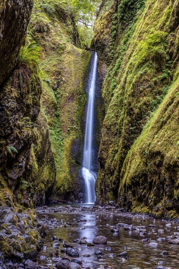 Les chutes inférieures luxuriantes et vertes d'Oneonta photo stock