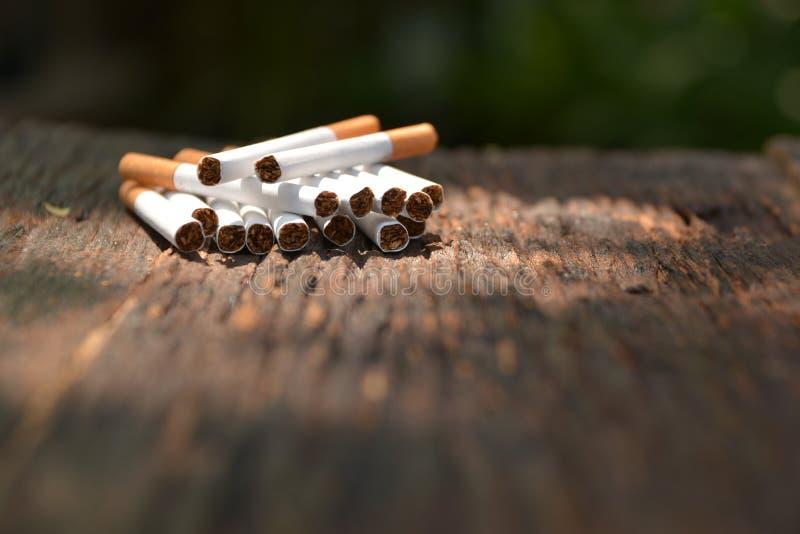 Les cigarettes de tabac sur le fond en bois avec la lumière brille sur image libre de droits