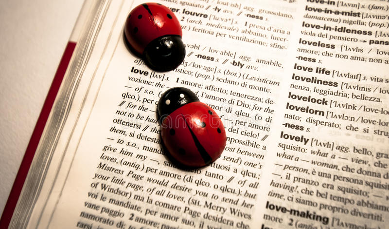 Les coccinelles sur un dictionnaire traduisant le mot aiment d'anglais à l'Italien image stock
