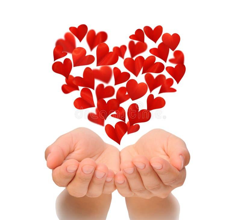 Les coeurs au coeur forment voler au-dessus des mains évasées de la jeune femme, carte d'anniversaire, Saint-Valentin, concept d' photo libre de droits