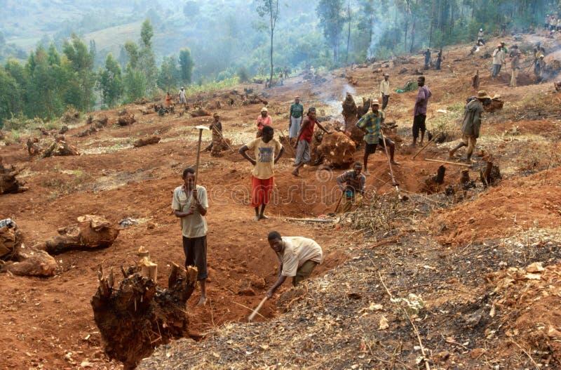 Les Colines, Rwanda fotografía de archivo libre de regalías