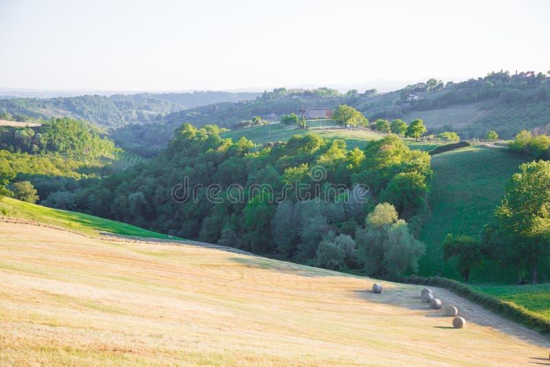 Les collines de Magliano Sabina Le Latium L'Italie image libre de droits