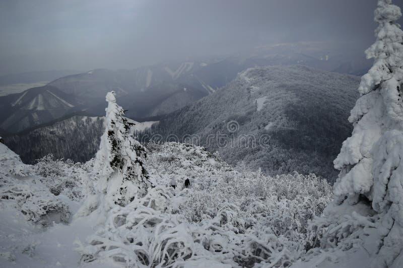 Les collines de Milou image libre de droits