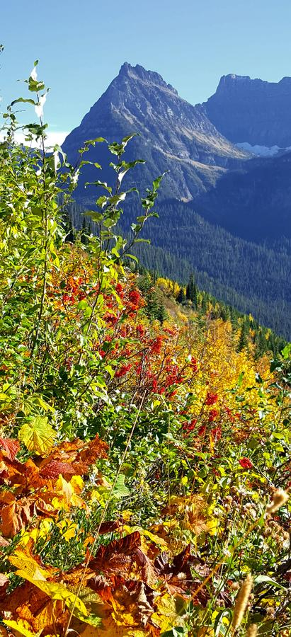 Les collines sont vivantes avec les couleurs de l'automne image stock