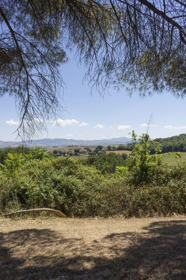 Les collines toscanes aménagent en parc, dans la région appelée ` Orcia de Val D photographie stock libre de droits