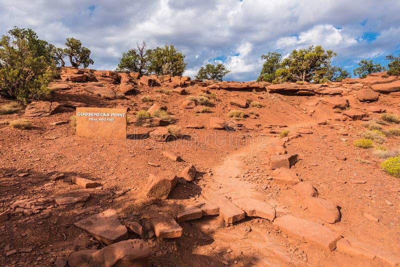 Les cols de cygne dirigent Trailhead, récif de capitol image libre de droits