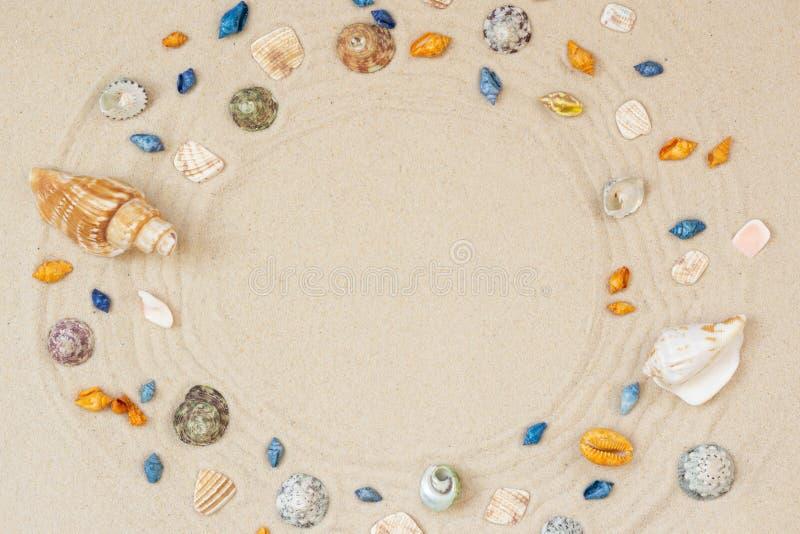 Les coquillages encadrent sur le fond de sable de plage Le bord de la mer naturel a donn? ? la vue une consistance rugueuse ext?r photo libre de droits
