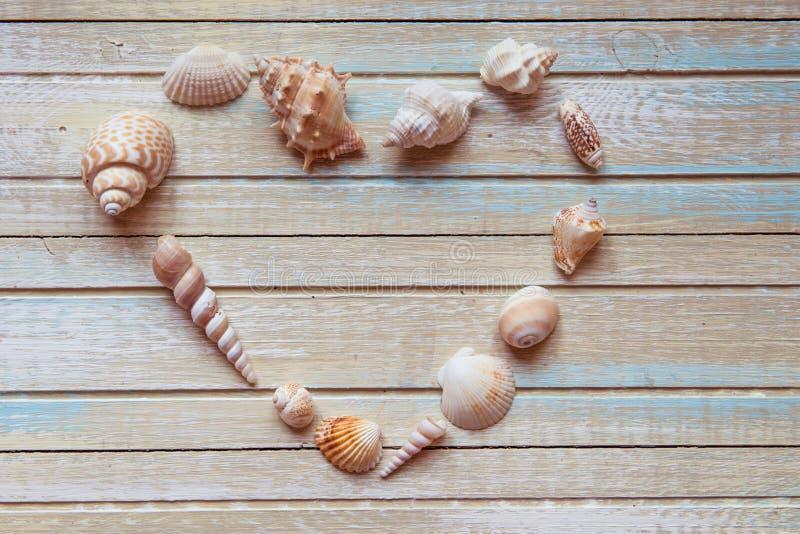 Les coquillages ont formé le coeur sur une vue supérieure de fond en bois photo libre de droits