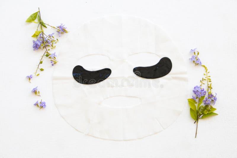 Les cosmétiques naturels couvrent l'extrait de masque et de masque de yeux de fines herbes photo libre de droits