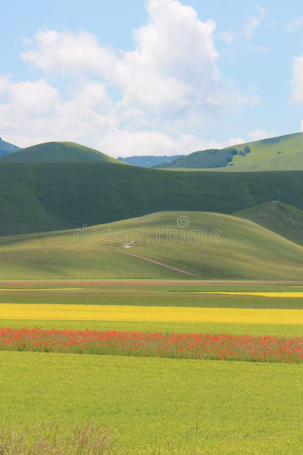 Les couleurs de castelluccio di norcia photo libre de droits
