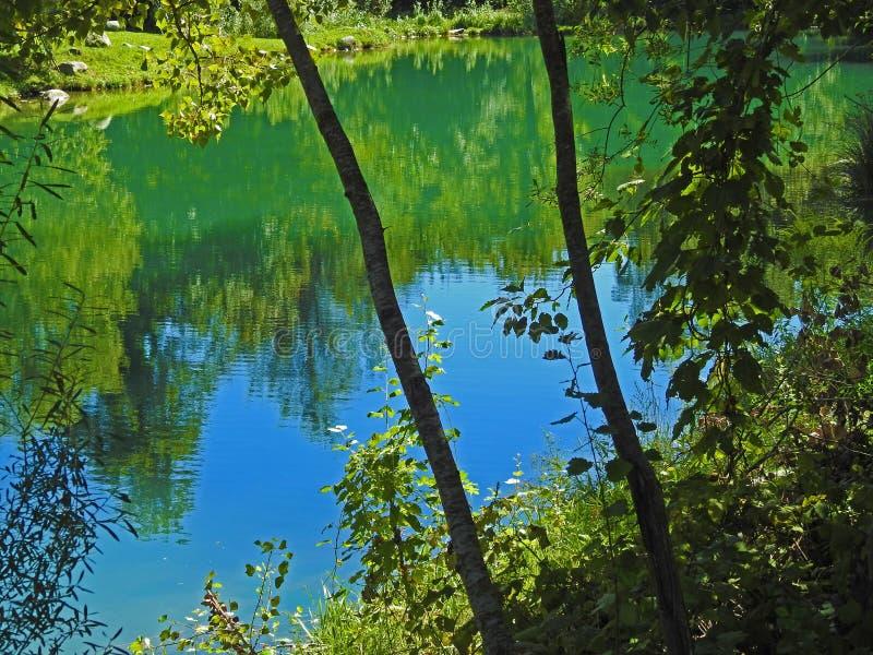 Les couleurs vertes des montagnes images libres de droits