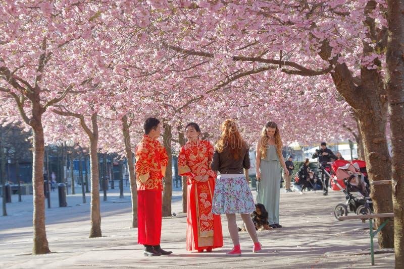 Les couples asiatiques dans des vêtements traditionnels en fleur de cerise se garent images stock