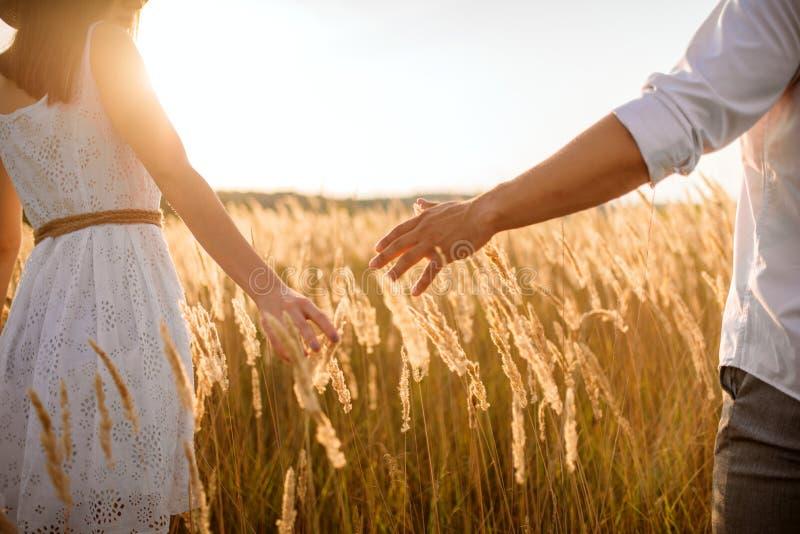 Les couples d'amour tiennent des mains dans un domaine de seigle sur le coucher du soleil image libre de droits