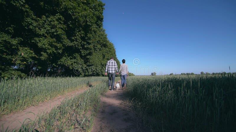Les couples dans l'amour marchent le chien photos stock