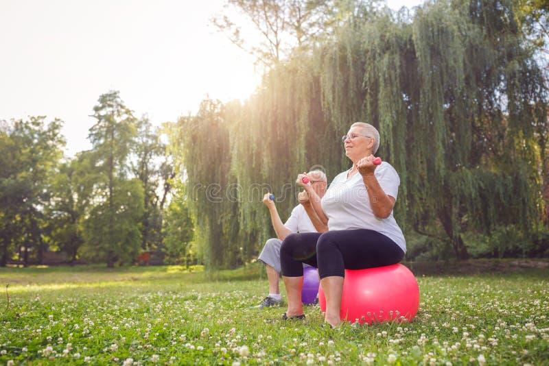 Les couples de retraité s'exercent ensemble sur la boule de forme physique en parc photo stock