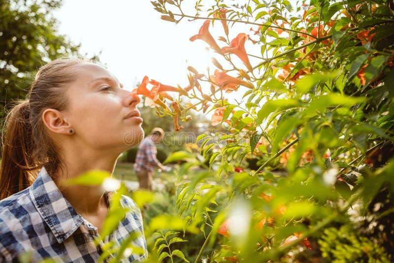 Les couples du jeune et heureux agriculteur à leur jardin dans le jour ensoleillé image libre de droits