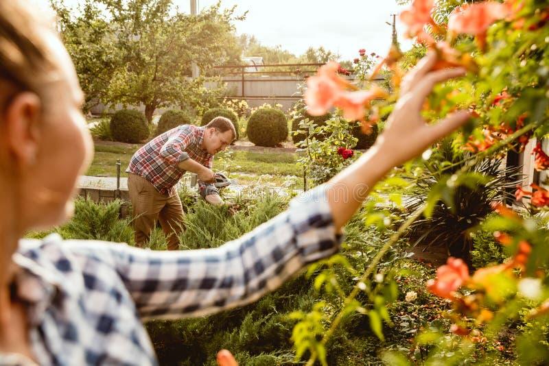 Les couples du jeune et heureux agriculteur à leur jardin dans le jour ensoleillé image stock