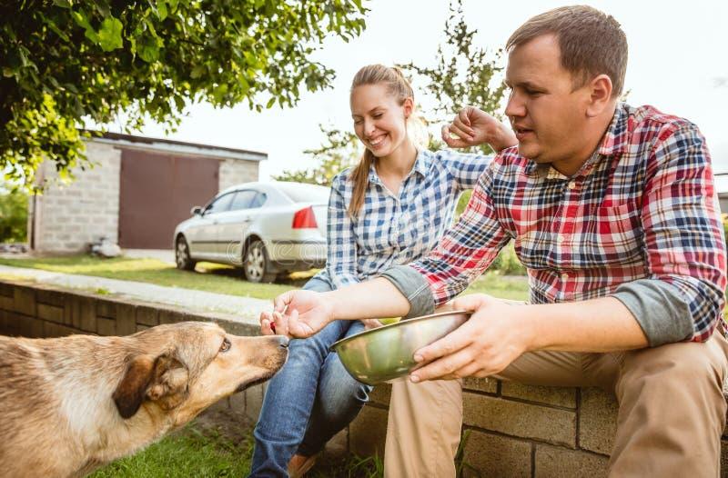 Les couples du jeune et heureux agriculteur à leur jardin dans le jour ensoleillé photo stock