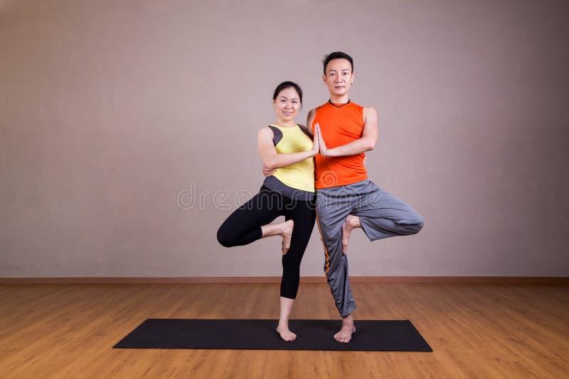 Les couples exécutent la double pose d'associé de yoga d'arbre images libres de droits