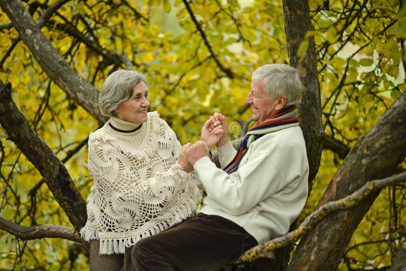 Les couples pluss âgé adorables sont entrés en parc photo libre de droits