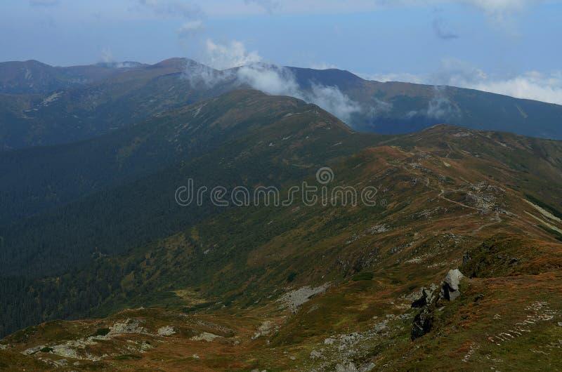 Les crêtes des montagnes carpathiennes Chaînes de montagne couvertes de forêts sous les nuages bleus photographie stock