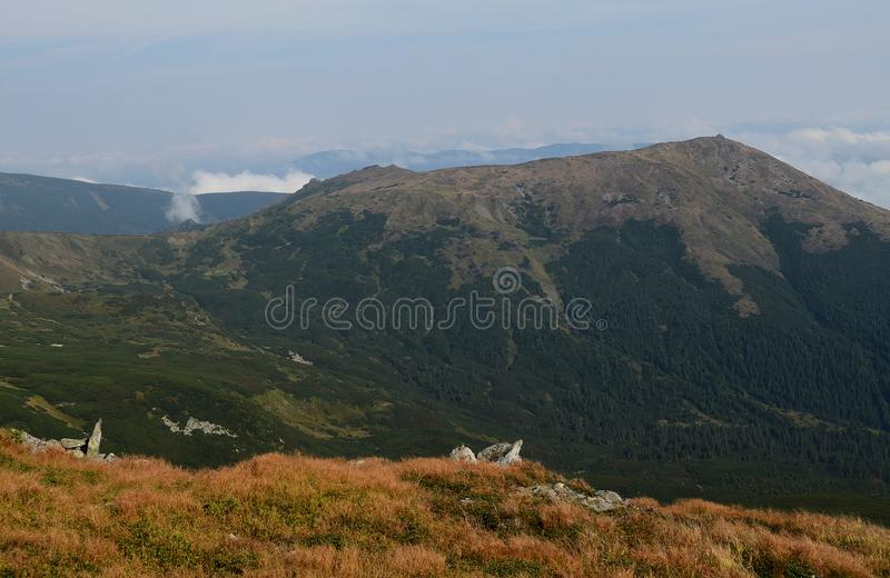 Les crêtes des montagnes carpathiennes Chaînes de montagne couvertes de forêts sous les nuages bleus photos stock