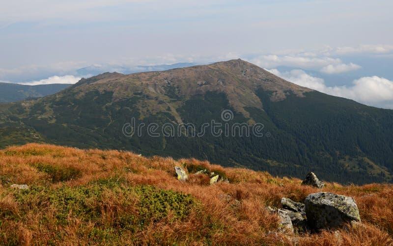 Les crêtes des montagnes carpathiennes Chaînes de montagne couvertes de forêts sous les nuages bleus photos libres de droits